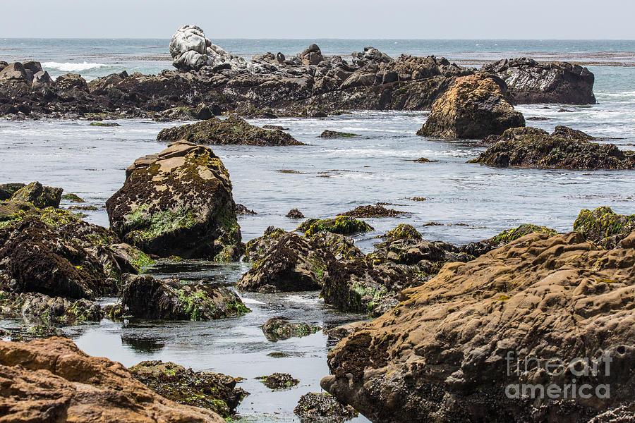 Cayucos Photograph - Cayucos Coast B3920 by Stephen Parker