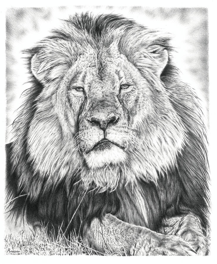 Cecil The Lion  by Remrov
