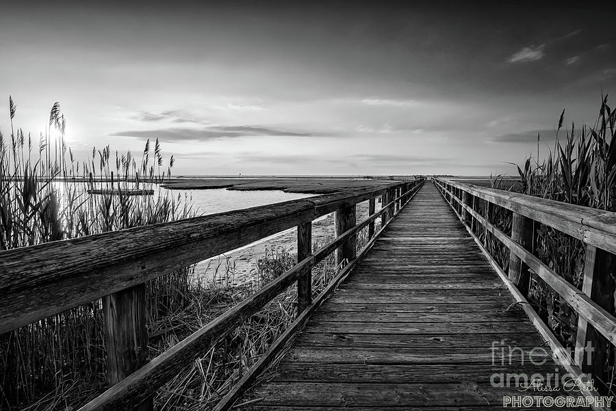 Cedar Beach Sunset Black And White Photograph By Alissa Beth Photography