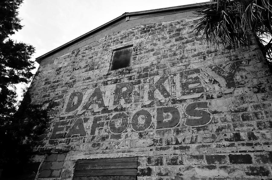 Sign Photograph - Cedar Key Sea Foods by David Lee Thompson