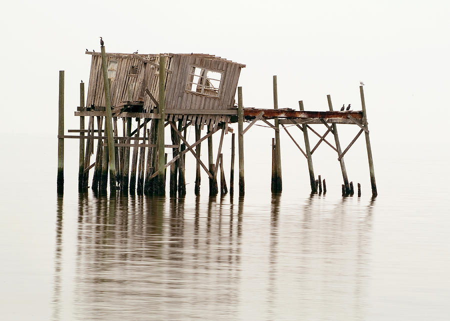 Wooden Photograph - Cedar Key Structure by Patrick M Lynch