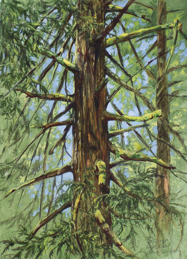 Cedar Painting - Cedar by Shari Erickson