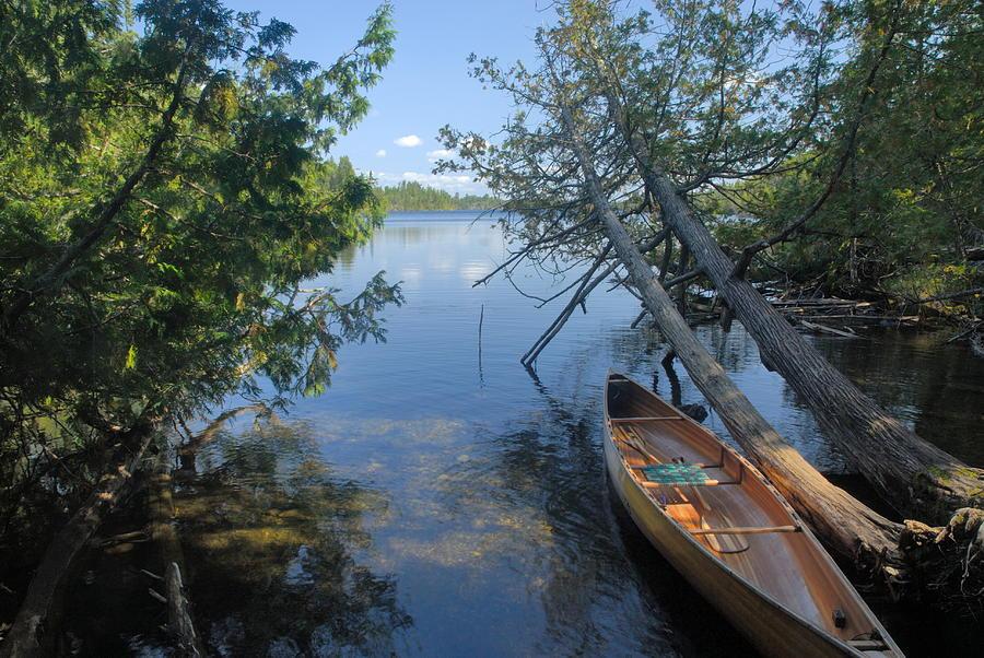 Boundary Waters Canoe Area Wilderness Photograph - Cedar Strip Canoe And Cedars At Hanson Lake by Larry Ricker