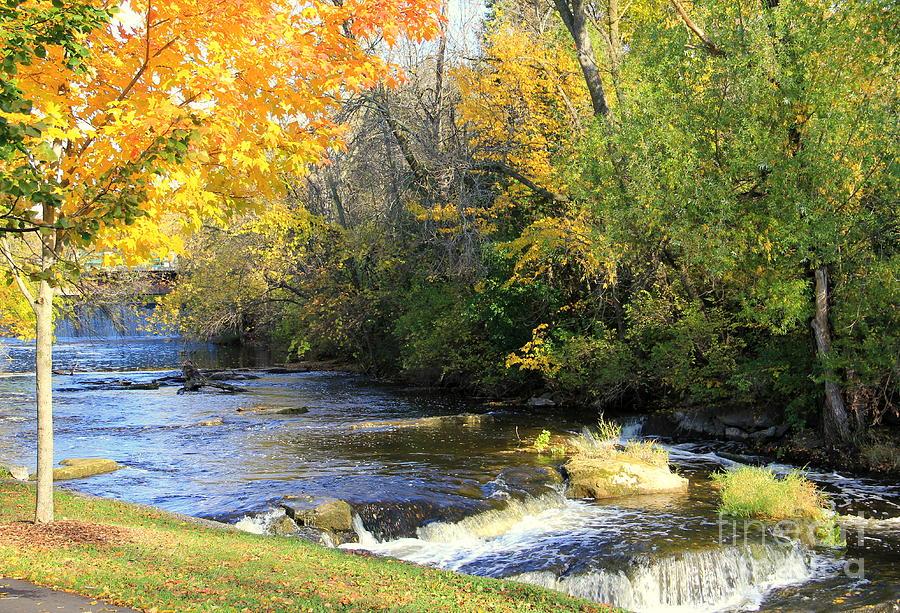 Cedarburg Photograph - Cedarburgs Cedar Creek  by Carol Komassa