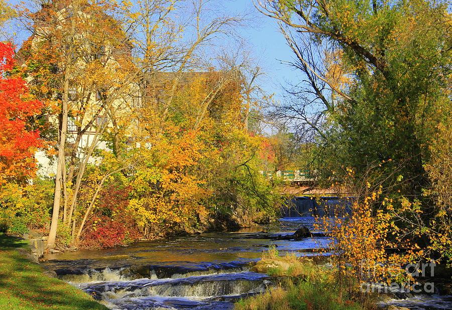 Cedarburg Photograph - Cedarcreek Fall by Carol Komassa