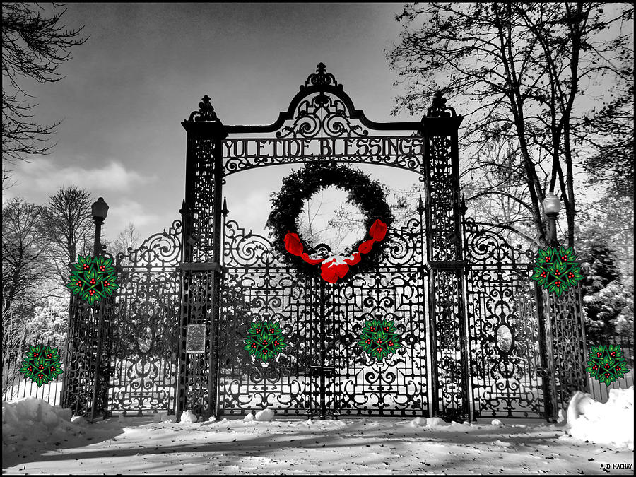 Wrought Iron Gate Digital Art - Celtic Yuletide Blessings by Celtic Artist Angela Dawn MacKay