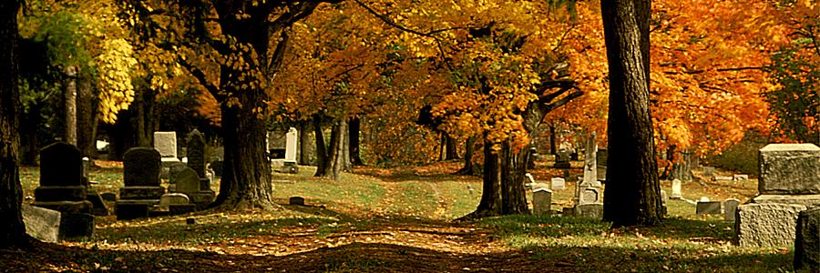 Fall Photograph - Cemetary Road in Autumn by Roger Soule