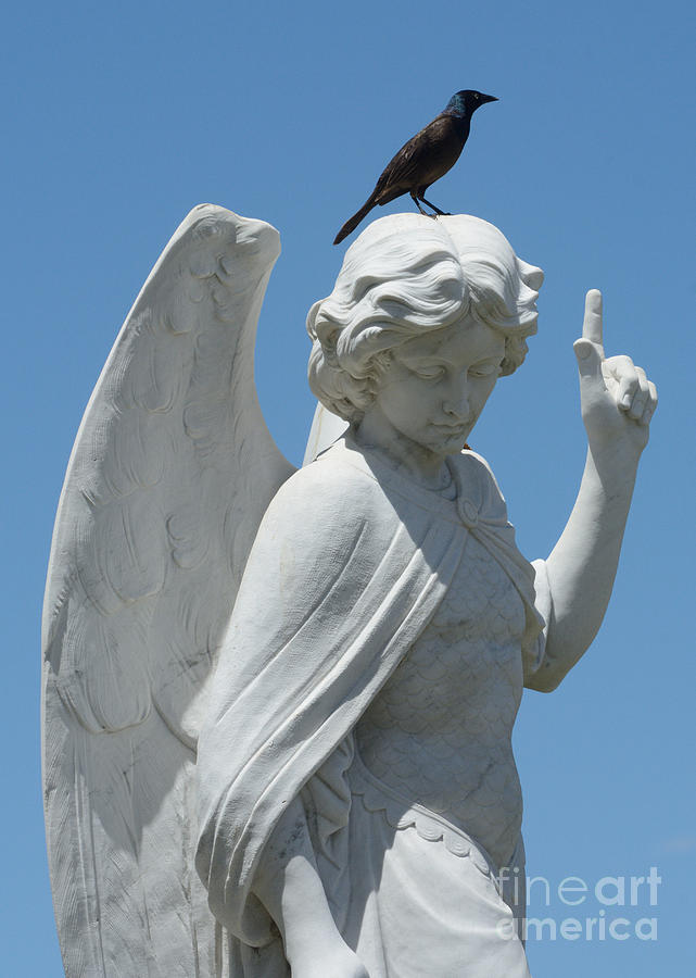Angel Photograph - Cemetery Angel by Merrimon Crawford