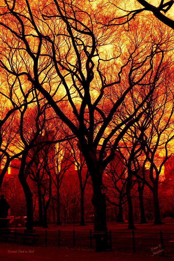 New York Photograph - Cental Park In Red by Diane C Nicholson