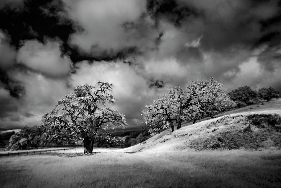 Central California Ranch Photograph