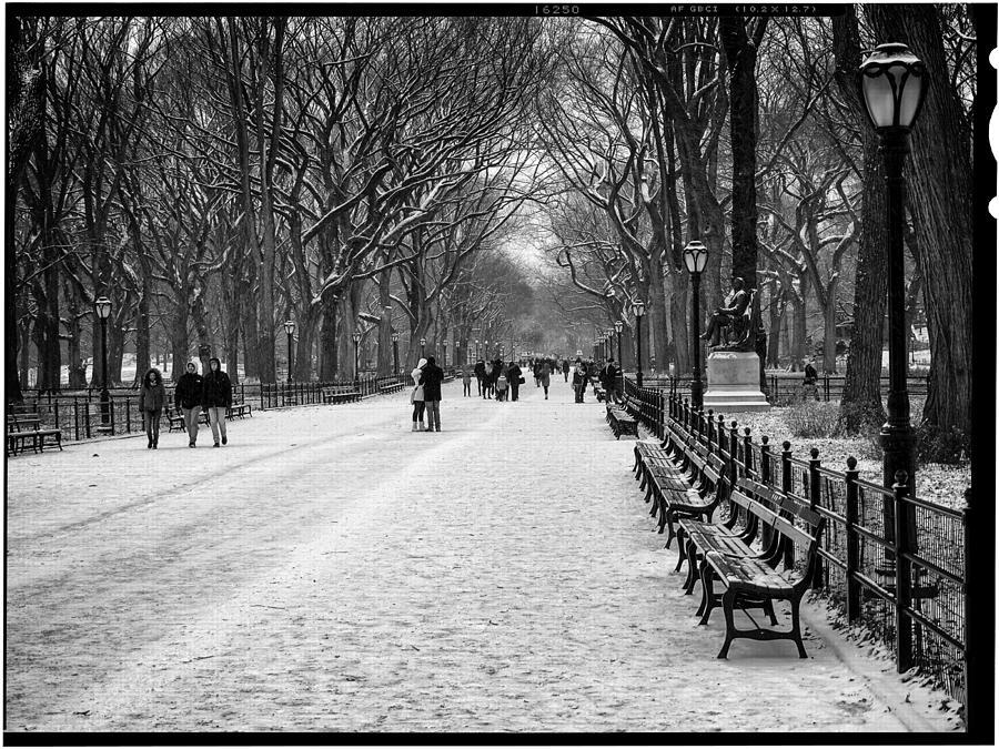 Ny Photograph - Central Park 2 by Wayne Gill