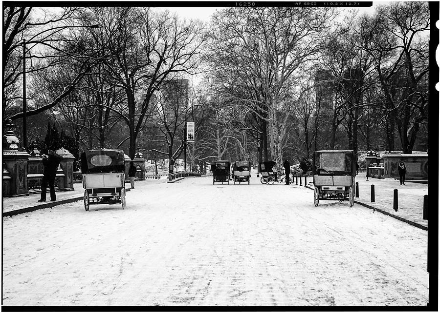 Ny Photograph - Central Park 7 by Wayne Gill