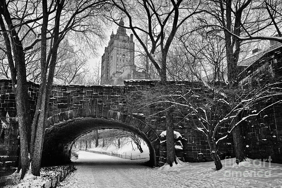 Cold Photograph - Central Park And The San Remo Building by John Farnan