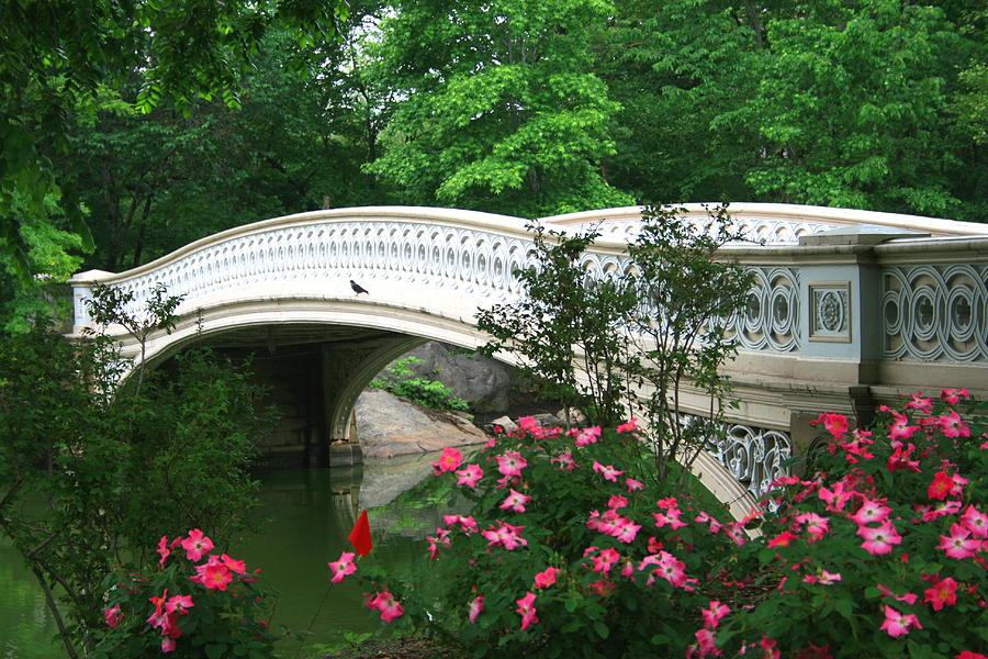 Central Park Photograph - Central Park Bow Bridge In Spring by Christopher Kirby