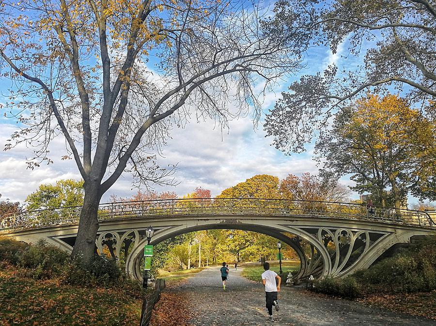 Central Park Photograph - Central Park Bridge by Cameron Dixon