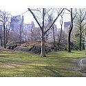 Central Park Photograph - central park II by Cassandra Neal