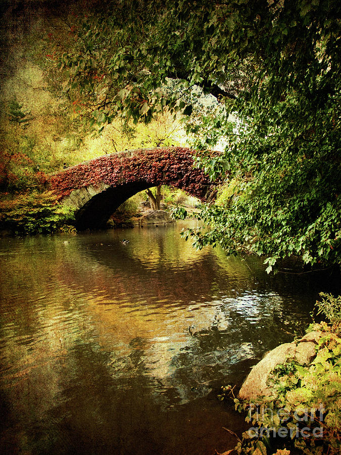 Central Park Photograph - Central Park In Autumn Texture 6 by Dorothy Lee