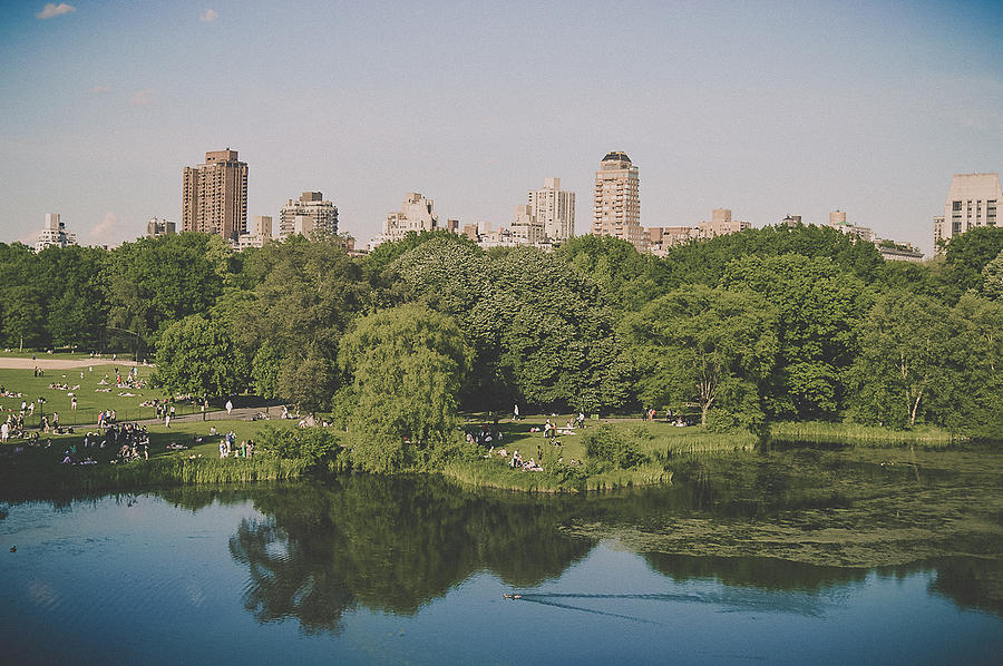 Home Decor Photograph - Central Park In Summer by Lena del Sol Langaigne
