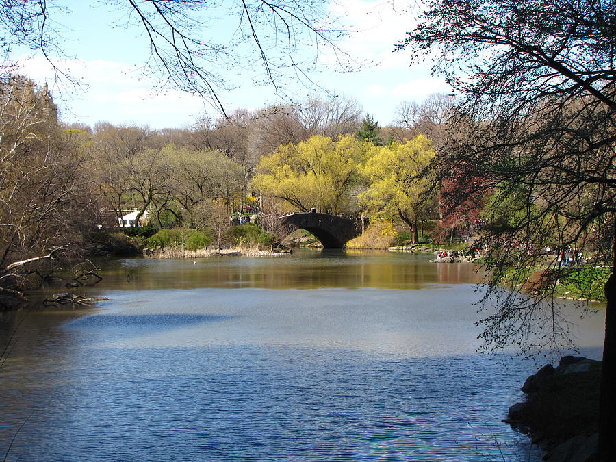 Central Park Photograph - Central Park Lake by Peter Aiello