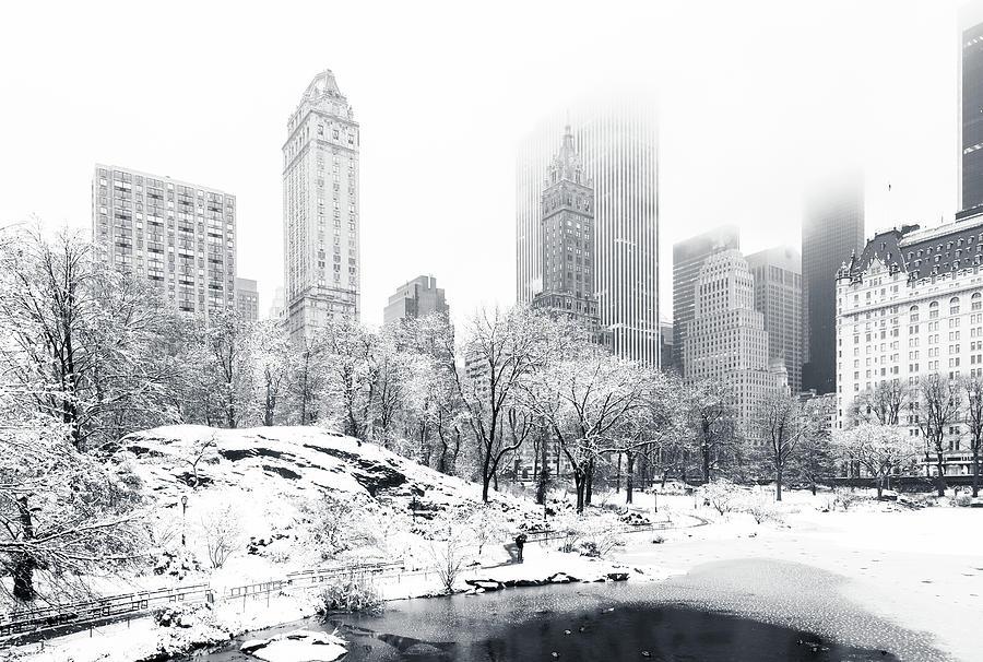 America Photograph - Central Park by Mihai Andritoiu