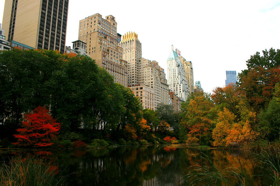 Central Park South Photograph - Central Park South by Christopher Kirby