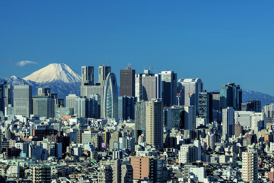 Central Tokyo and Mt. Fuji by Ponte Ryuurui