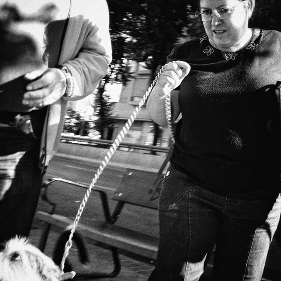 Street Photograph - Chained Puppy  #dog #animals #animal by Rafa Rivas