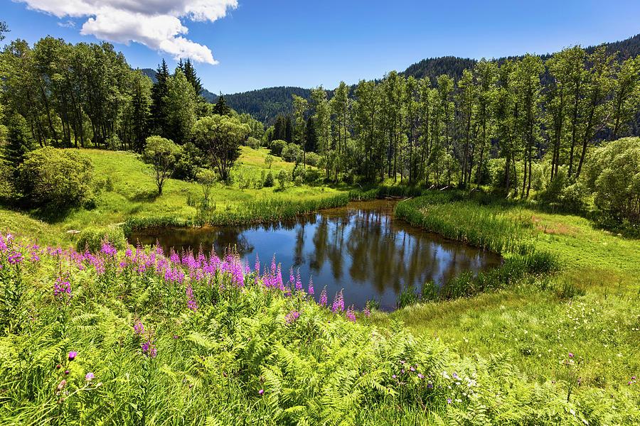 Bulgaria Photograph - Chairi Lake by Evgeni Dinev