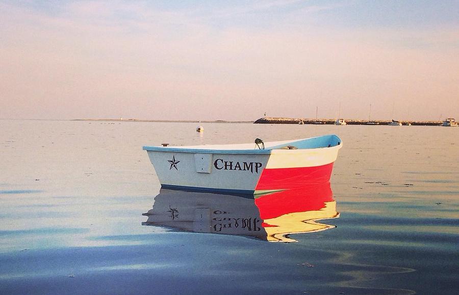 Cape Cod Photograph - Champ by Mark Beliveau