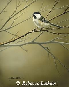 Chickadee Painting - Changing Seasons - Chickadee by Rebecca Latham