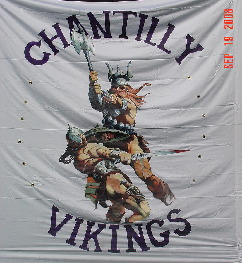 Vikings Painting - Chantilly Vikings by Kerry Burch