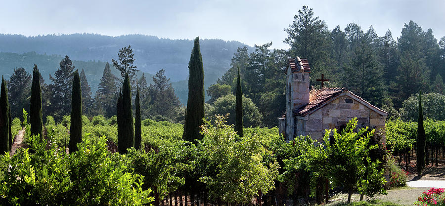 Chapel Photograph - Chapel In The Napa Valley Vineyards by Anne Branson