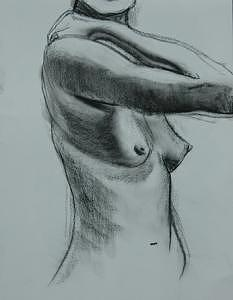 Charcoal Nude 3 Drawing by Danielle Auriemma- Damico