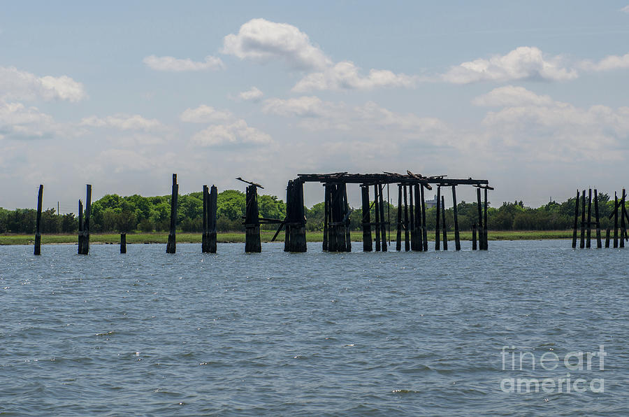 Coal Tipple Photograph - Charleston Export Coal Terminal Wooden Testle by Dale Powell