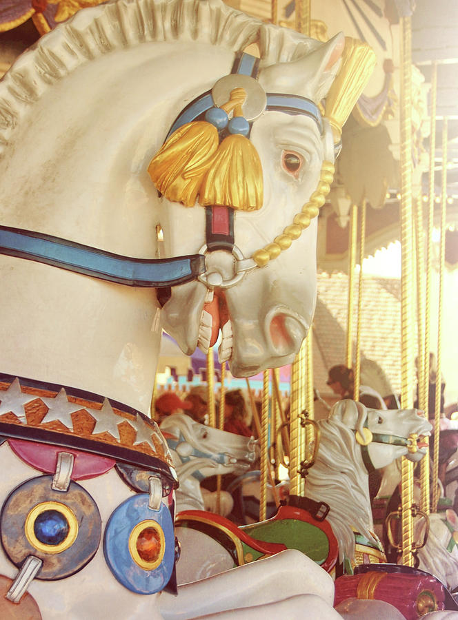 Horse Photograph - Charming Chariot by JAMART Photography