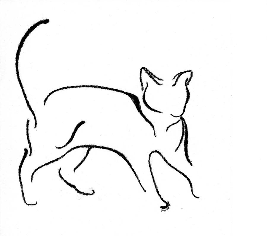 Cat Drawing - Chat Cinq by Caprice Scott