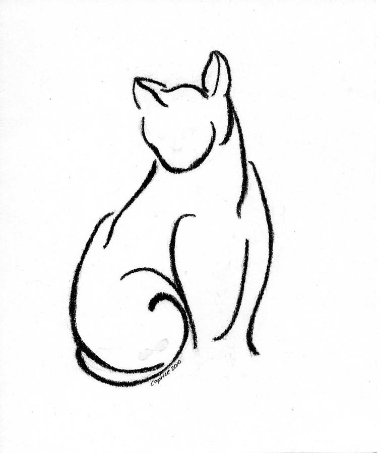 Cat Drawing - Chat Un by Caprice Scott