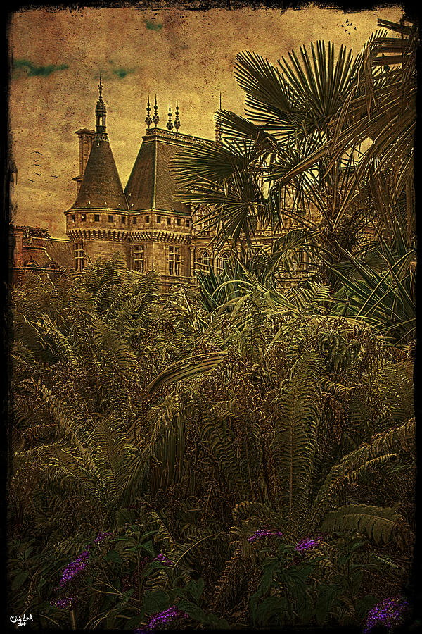 Chateau Photograph - Chateau In The Jungle by Chris Lord