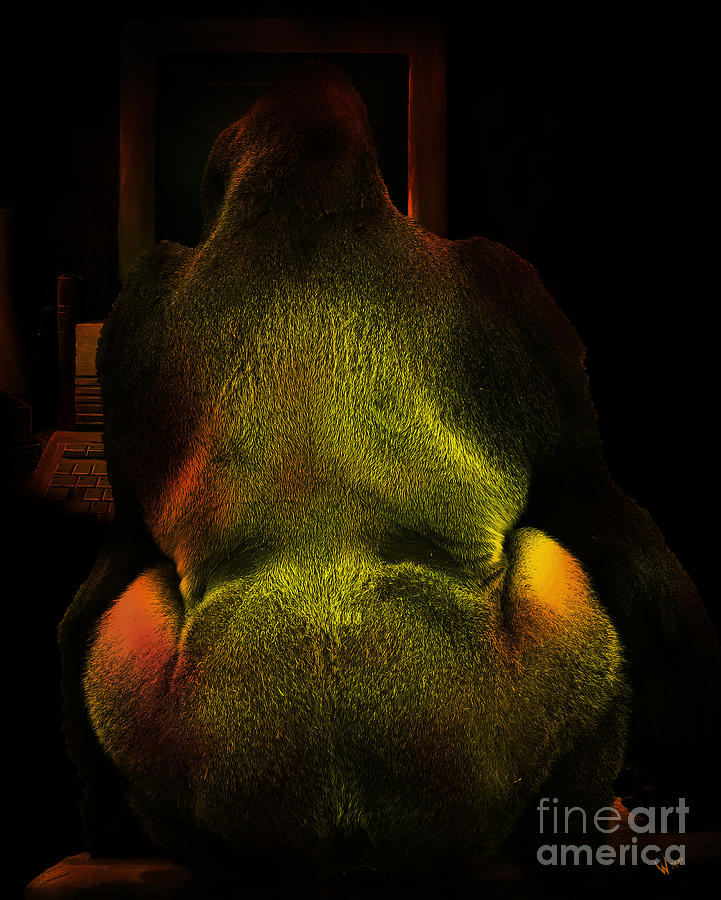 Gorilla Photograph - Chatroom Screen Name Mildmannerguy4u by Wingsdomain Art and Photography