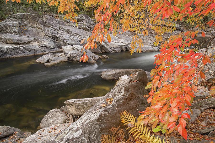 Chattooga River 16 by Derek Thornton