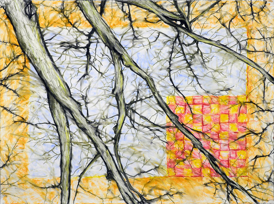Treetop Drawing - Checkerboard Sun by John Terwilliger