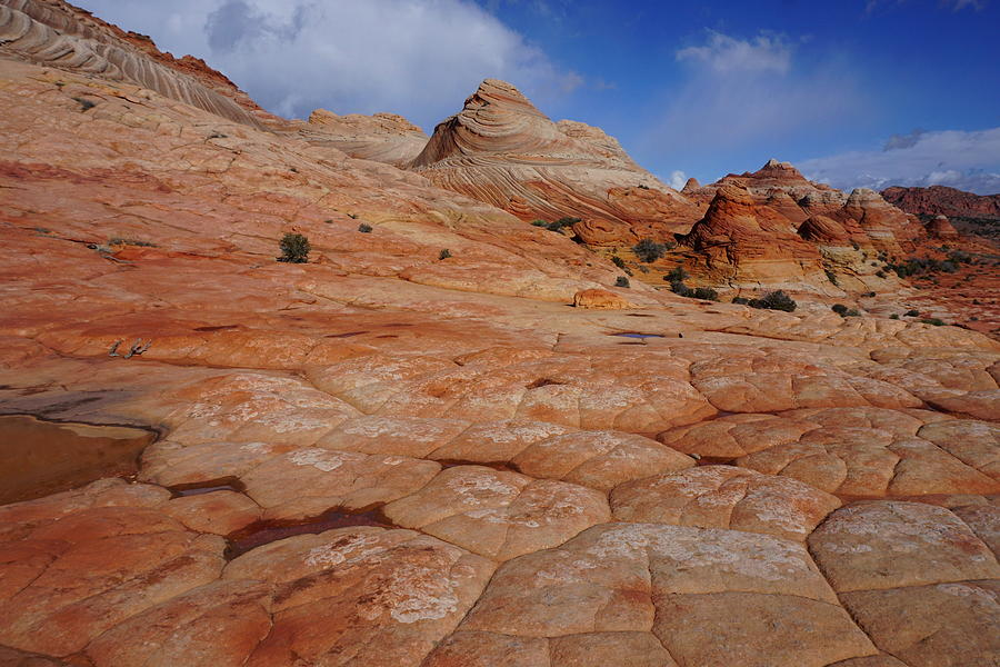 Checkered Red Rock by Tranquil Light Photography