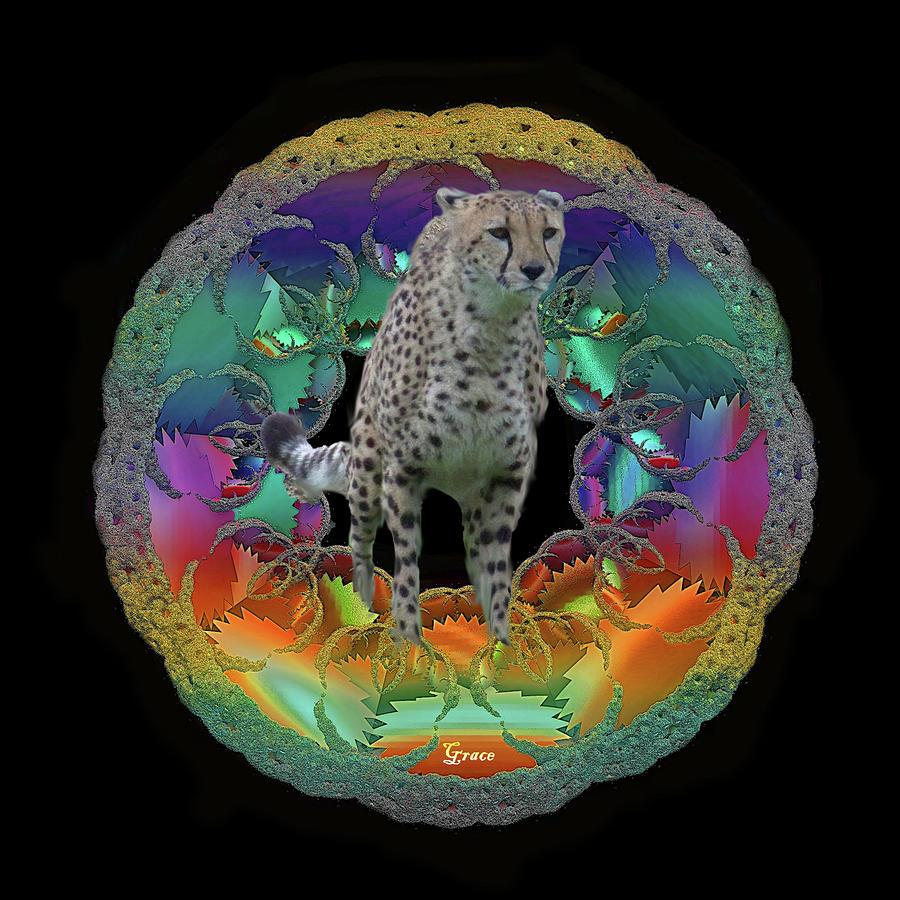 Cheetah Photograph - Cheetah by Julie Grace