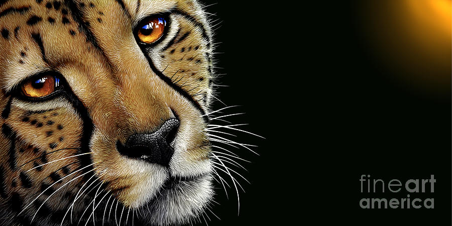 Cheetah Painting - Cheetah by Jurek Zamoyski