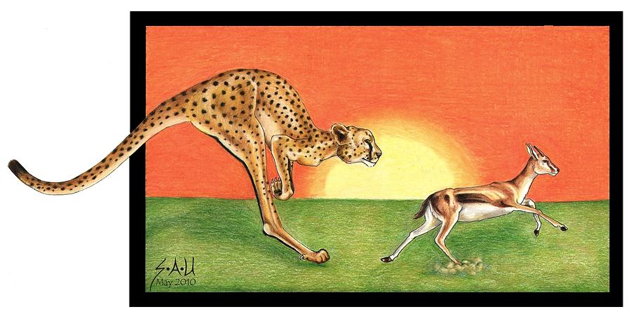 Cheetah Drawing - Cheetahroo On The Hunt by Sheryl Unwin