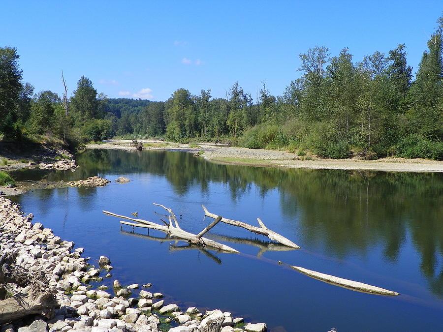 Digital Photography Photograph - Chehalis River Washington by Laurie Kidd