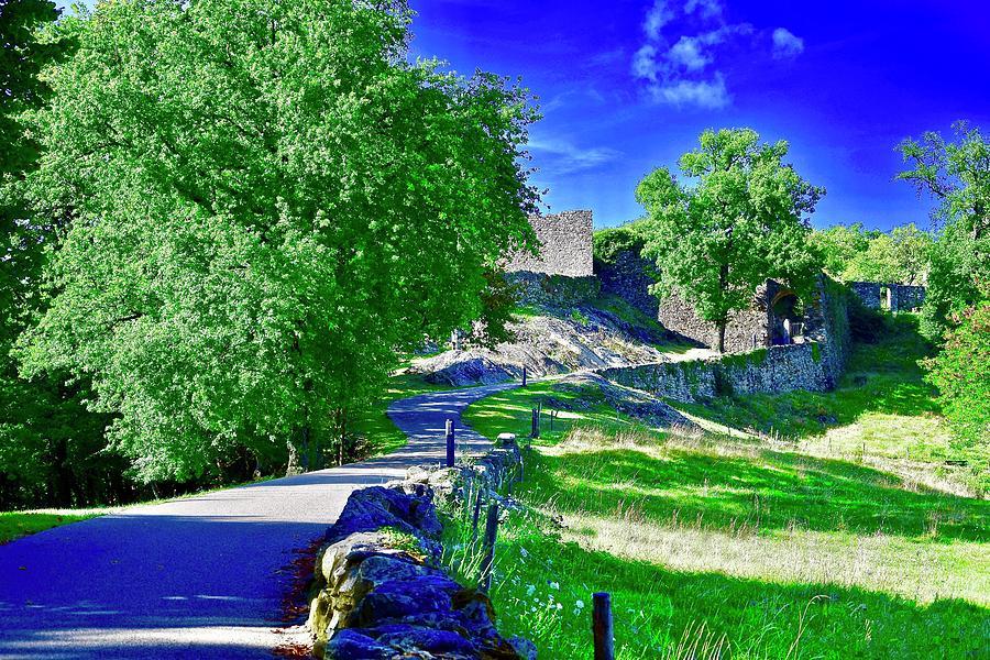 Chemin Vers Le Chateau A Photograph