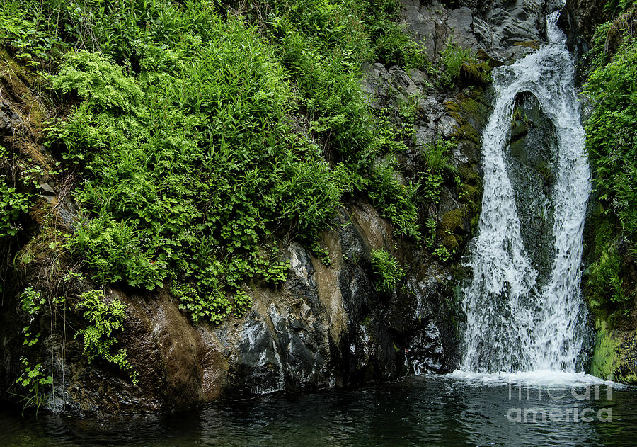Waterfall Photograph - Chemisal Falls At Vichy Springs In Ukiah In Mendocino County, California by David Oppenheimer