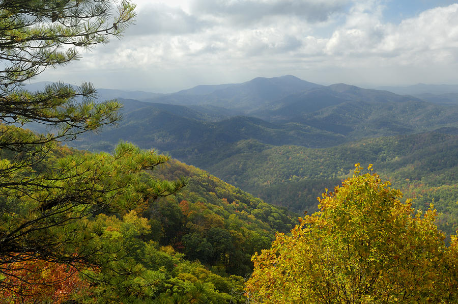Scenic Photograph - Cherohala Skyway In Autumn Color by Darrell Young