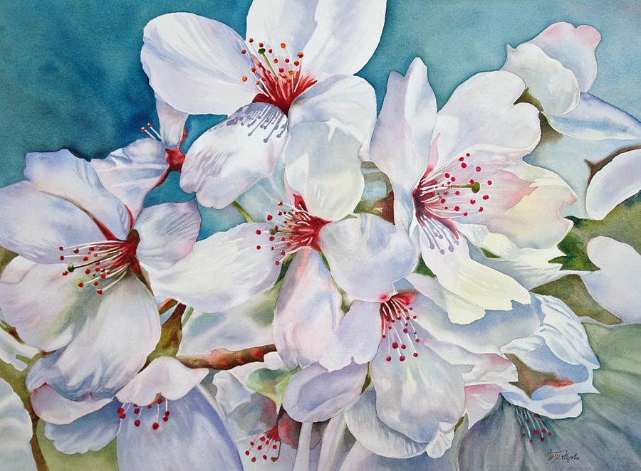 Cherry Blossoms Painting - Cherry Blossom -c by Diane Fujimoto